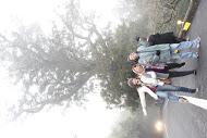 海拔2150m云雾渺渺中的碧绿神木更显庄严神秘